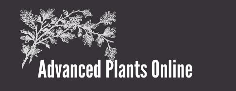 Advanced Plants